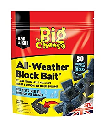 The Big Cheese All-Weather Block Bait², Blue