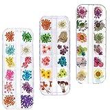 fleurs séchées nail décoration nail art décoration fleurs de style Vernis à ongles nail art...