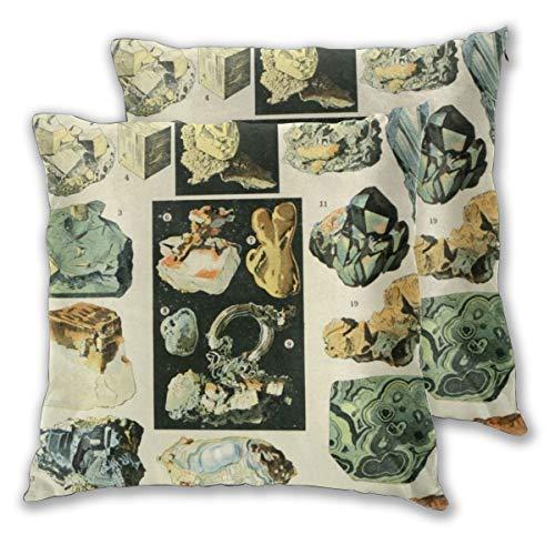 Jacklee Set von 2 Kissenbezügen, dekorative quadratische Kissenbezüge, für Heimdekoration, Schlafzimmer, Wohnzimmer, 45,7 x 45,7 cm, Vintage Minerals Chart
