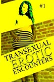 Transexual Erotic Encounters #1