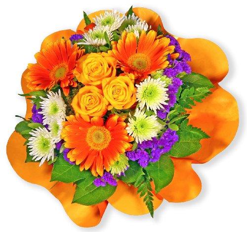 """floristikvergleich.de Blumenstrauß Blumenversand """"Viele Grüße"""" +Gratis Grußkarte+Wunschtermin+Frischhaltemittel+Geschenkverpackung"""