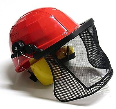 Kopfschutz für Waldarbeiter