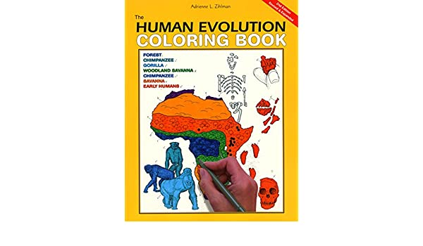 Buy The Human Evolution Coloring Book, 2nd Edition (Coloring ...