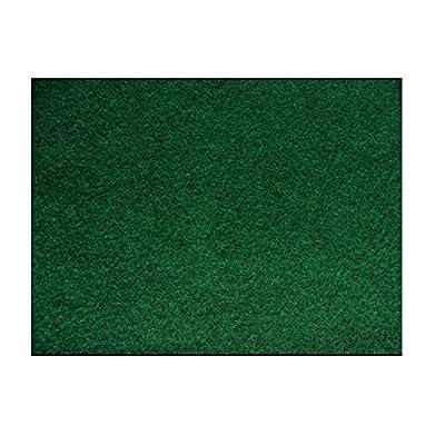Komodo Reptile Carpet by Komodo