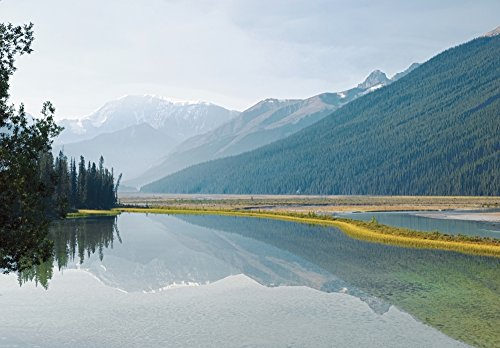 The Poster Corp Philippe Widling/Design Pics - Canadian Rockies Reflected In Beauty Creek Jasper National Park Alberta Canada Photo Print (43,18 x 30,48 cm) -