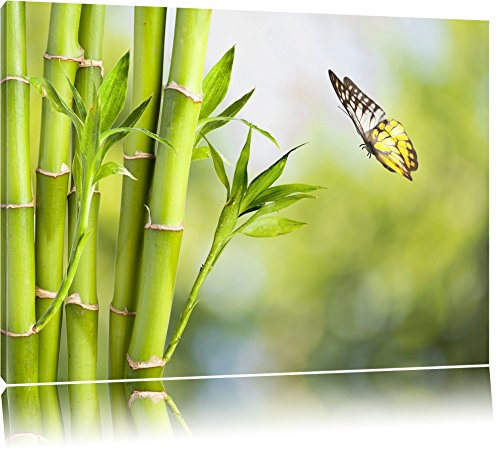 Bambus mit Schmetterling Format: 120x80 auf Leinwand, XXL riesige Bilder fertig gerahmt mit Keilrahmen, Kunstdruck auf Wandbild mit Rahmen, günstiger als Gemälde oder Ölbild, kein Poster oder Plakat