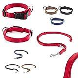 CarlCurt Classic-Line Hundehalsband & Hundeleine im Set, aus strapazierfähigem Nylon, M 35-53cm & M 1,90m, rot