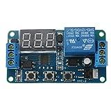 Rele de automatizacion - SODIAL(R)Automatizacion DC 12V LED pantalla Temporizador de retraso digital Interruptor de Control Modulo de reles