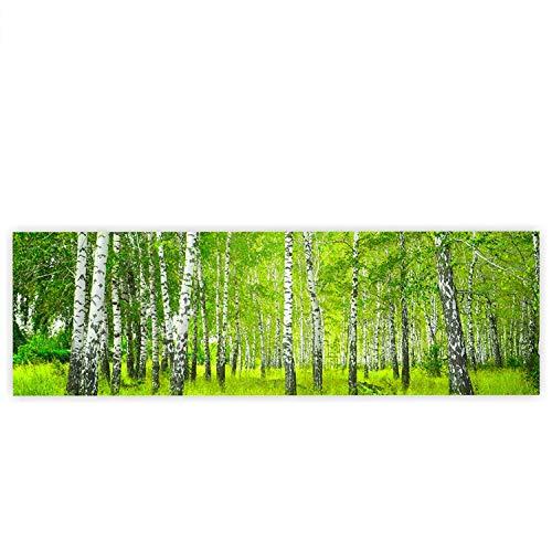 Leinwandbild 145x45 cm - Top - Wandbild XXL Kunstdruck Leinwand Bild Wanddeko Canvas - SUNNY BIRCH FOREST - Birkenwald Bäume Wald Sonne Birke Birken Natur Baum - no. 112, Qualität Leinwand:Premium