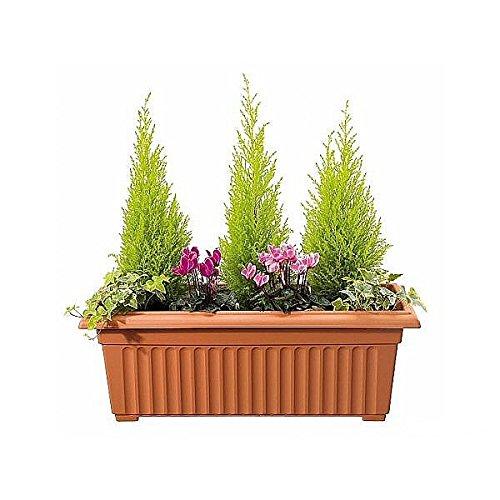 stewart-corinthian-trough-70-cm-terracotta