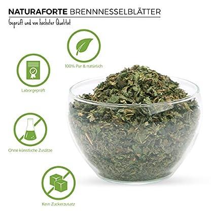 NaturaForte-Brennnesselbltter-geschnitten-1kg-Brennnesseltee-Bltter-schonend-getrocknet-Teebltter-Brennnessel-im-Beutel-fr-Tee-aus-kontrolliertem-Anbau-Arzneimittel-Qualitt
