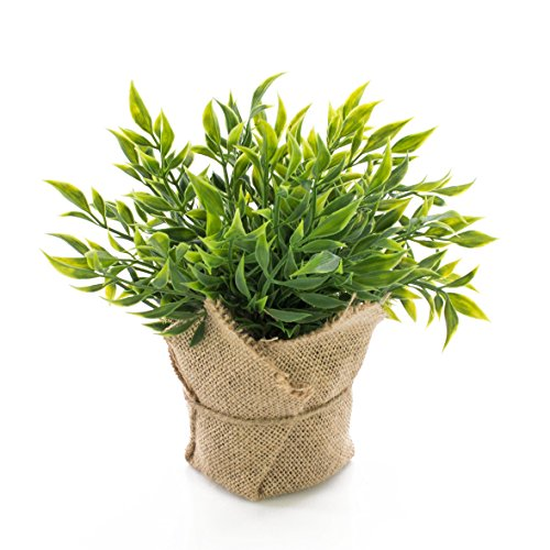 artplants Lot 3 x Fragon Faux Houx Artificiel Vitus dans Son Sac de Jute, Vert, 22cm - 3 pcs Plante...