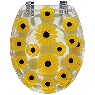 Sanitop-Wingenroth Toilet seat with Sun Design, Set of 1, Transparent, 404655