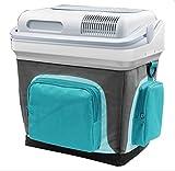 HYLM Portable Car Kühlschrank 24L Kleiner Kühlschrank für Camping Camping Truck Kühlschränke, Hot And Cold Dual , 39*28*42