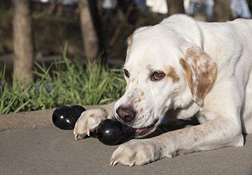 KONG-Extreme-Goodie-Bone-Dog-Toy-Medium-Black