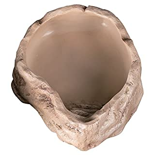 Reptile Water Dish Medium (20cm x 16cm x 4.5cm)