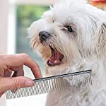 Neoteck Grooming Comb 3 Pieces Pet Grooming Dematting Comb Tool Kit Stainless Steel Double Sided Professional Dematting… 12