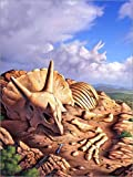 Stampa su Acrilico 60 x 80 cm: The Exposed Bones of a Triceratops on a Western Landscape. di Jerry LoFaro/Stocktrek Images