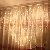 Eplze LED-Vorhang-Licht 36pcs Herz der liebe um 2m x 1,5m 124 LEDs 8 Steuerbare Modi Wasserdicht -Schnur-Licht für das Weihnachtsfest Hochzeit Festival (Warmes Weiß)