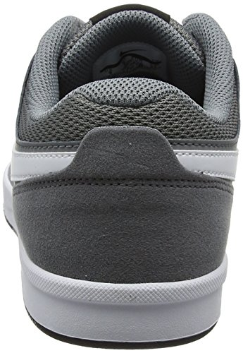Nike Herren SB Fokus Turnschuhe Grau (Cool Grey/white Black)