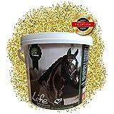 EMMA ♥ natürliche Elektrolyte fürs Pferd, dopingfrei I Energie Futter I Booster I Ergänzungsmittel I Natural Mineralstoffe & Aminosäuren I Sport & Turnierpferde I 2,5 Kg