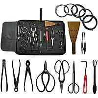 Voilamart Bonsai - Juego de herramientas para jardinería (10 piezas, acero al carbono, cortador de tijeras)