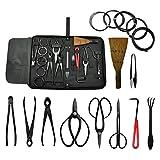 Voilamart Bonsai Tool Kit 10 pezzi Scissor Cutter Case Shear Case Garden Strumenti Starter Set Principianti