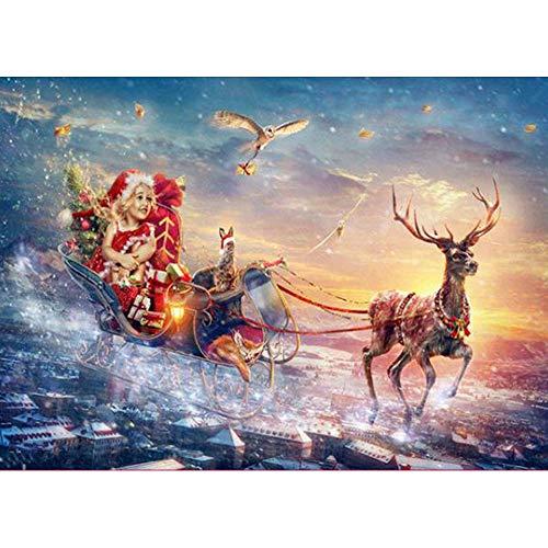 Riou DIY 5D Diamant Painting voll,Stickerei Malerei Diamant Weihnachten Bild Muster Crystal Strass Stickerei Bilder Kunst Handwerk für Home Wand Decor gemälde Kreuzstich (Mehrfarbig Y, 30 * 40cm)