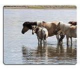"""luxlady Gaming tapis de souris d'image: 34227385Mongolie Tentes appelée """"yourtes sans réserve dans une nature en Mongolie Cheval pâturage"""