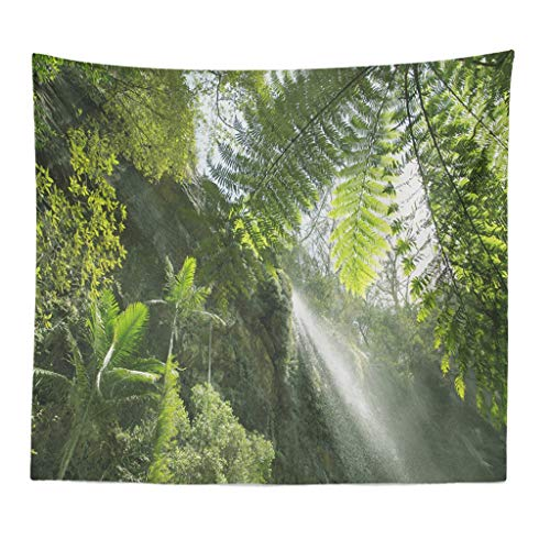 Xmiral Tapisserie Wald Pflanze Landschaft Yogamatte Picknickdecke Wandteppich Wanddeko 150X200cm(X)