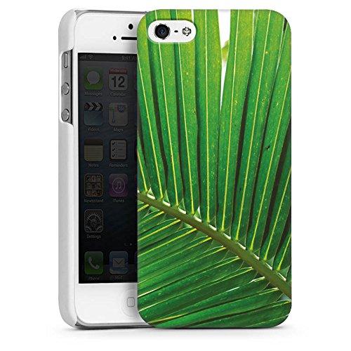 Apple iPhone 6 Housse Étui Silicone Coque Protection Plumeau de palmier Feuille Nature CasDur blanc