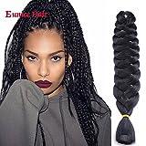 6 Packs Eunice Hair Jumbo Flechten Hair Extensions Colorful Kunsthaar Kanekalon Haar für Heimwerker Schwarz Crochet Box Zöpfe Ombre 2Tone Color 165 g/pcs 100 cm (schwarz)