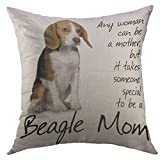 Best Better Homes and Gardens Bath Pillows - Mugod Decorative Throw Pillow Cover Case for Couch Review
