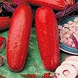 Inovey 30Pcs Semillas De Pepino Rojo Frutas Hortalizas Semillas Plantas Raras Bonsái Casa Jardín