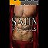 Satin (A Material World Book 2)
