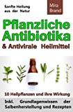 Pflanzliche Antibiotika & Antivirale Heilmittel: Sanfte Heilung aus der Natur (Inkl. Grundlagenwissen der Salbenherstellung und Rezepten)