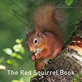 The Red Squirrel Book (Nature Book)