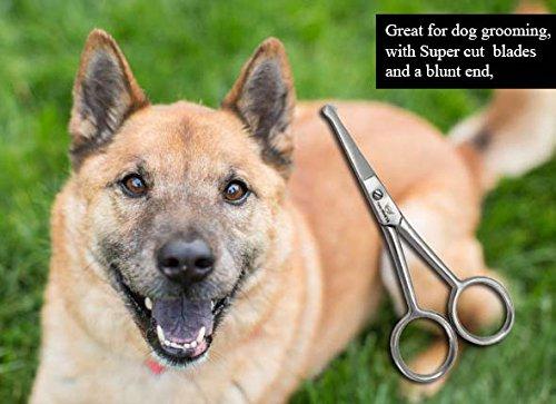 "Focus World Professional Pet Dog Grooming Scissors Straight Shears Tool Durable 4"" 3"