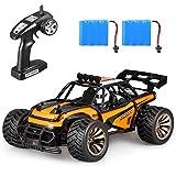 Aandyou Ferngesteuertes Auto,1:16 RC Auto,2.4GHz Ferngesteuertes Monstertruck,High Speed RC-Auto mit 2 wiederaufladbaren Batterien (Orange)