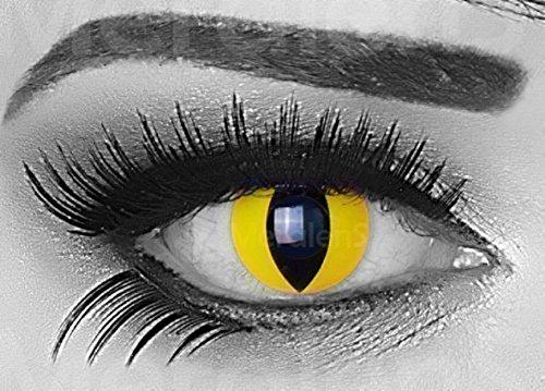 Funnylens 1 Paar farbige gelbe Crazy Fun cat eye Jahres Kontaktlinsen. Topqualität zu Fasching und Karneval mit gratis Kontaktlinsenbehälter ohne (Katze Kontaktlinsen)