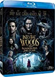 Into The Woods, Promenons-nous Dans Les Bois [Blu-ray]