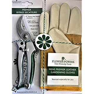 Mens Leather Gardening Gloves and Bypass Secateurs Set - Premier Work Gloves & Heavy Duty 8