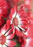 Es müssen nicht immer rote Rosen sein (Tischaufsteller DIN A5 hoch): Flipart, mit wunderbaren Blüten Fotografien (Tischaufsteller, 14 Seiten) (CALVENDO Natur) [Taschenbuch] [Jun 10, 2013] r.gue., k.A.