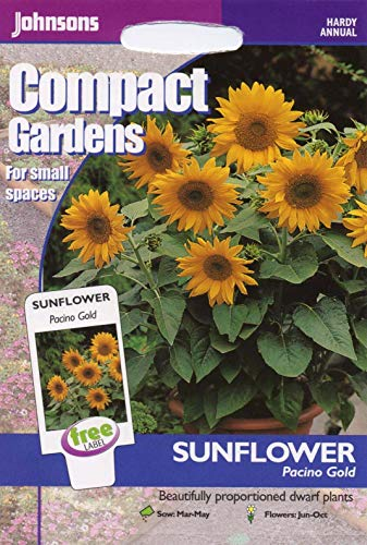 Portal Cool Johnsons Seeds - Pictorial Pack - Blume - Sonnenblume Pacino Gold - 20 Samen -