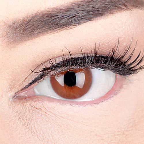 Braune Premium Kontaktlinsen 'Jasmine Choco' Farbige Linsen Mit Stärke Braun + Behälter von Glamlens, weiche 3-Monatslinsen im 2er Pack -5.00