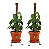 #10: TrustBasket Set of 2 Premium Pot Stand for Plants
