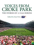Voices from Croke Park: The Stories of 12 GAA Heroes (English Edition)