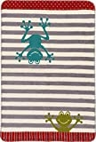 Unbekannt Richter Textilien Bio-Babydecke Baumwolle grün/grau Größe 75x100 cm
