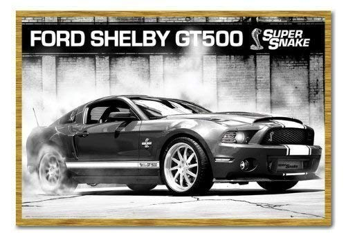 ce23ebba4341 Ford Shelby Gt500 supersnake poster sughero Pin Lavagnetta Rovere Con  Cornice - 96.5 x 66 cms (circa 96,5 x 66 cm)