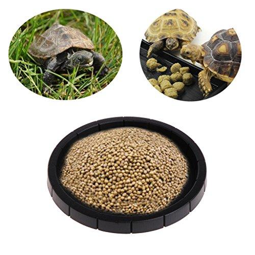 Yanhonin Runde Schüssel für Reptilien und Amphibien, Fressnapf, Wasserschale, Terraristik Zubehör